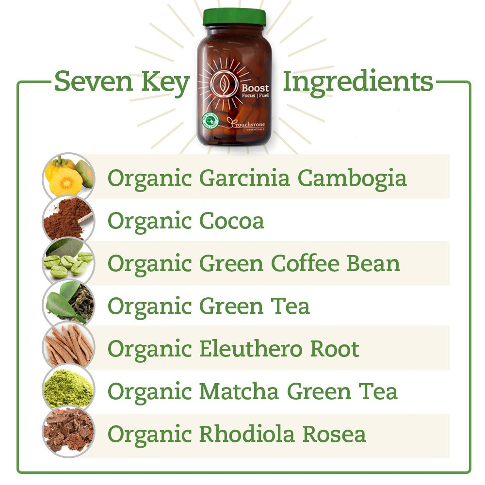 Seven Key Ingredients in Boost Focus Fuel!