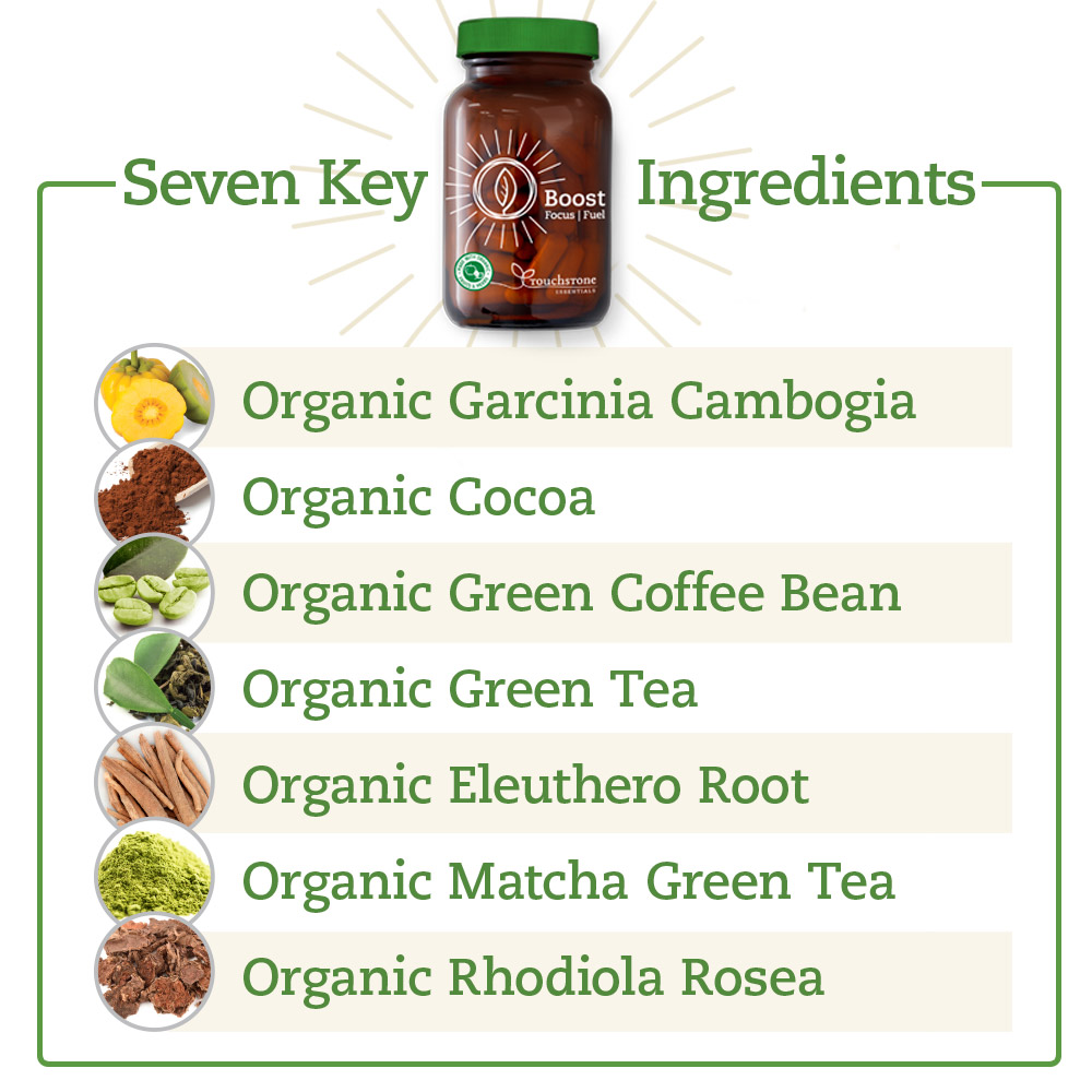 Seven Key Ingredients in Boost Focus Fuel!