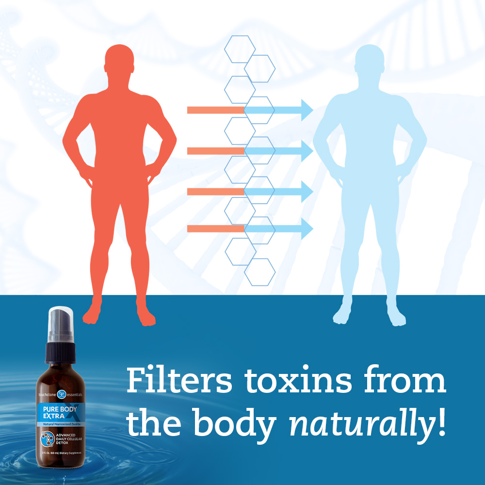 Filters Toxins from the Body Naturally!
