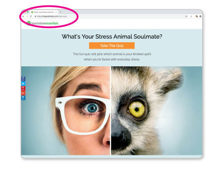 """how to share the """"what's your stress animal soulmate"""" quiz"""