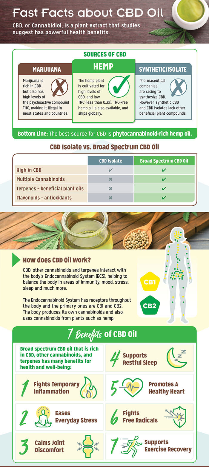 Facts about CBD oil infographic